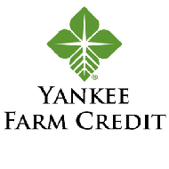 Yankee -farm -credit 190sq